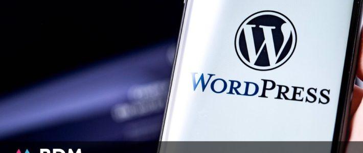 Chiffres WordPress – 2020 – BDM