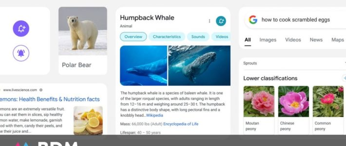 Google : le nouveau design du moteur de recherche sur mobile