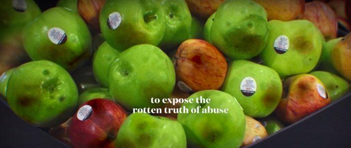 Des pommes meurtries pour lutter contre les violences conjugales
