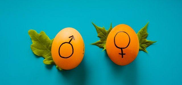 L'égalité entre les sexes sur le lieu de travail, vers un réel changement ?