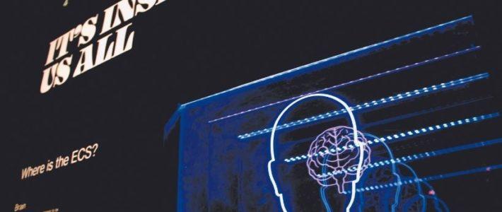 Le neuromarketing peut-il attiser notre désir d'acheter ?