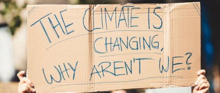 Scientifiques, magistrats, ingénieurs : les nouveaux militants du climat